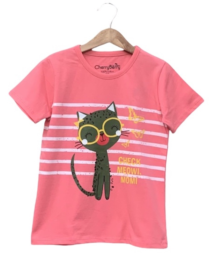 Pack of 10 pc's Cat lover T-shirt